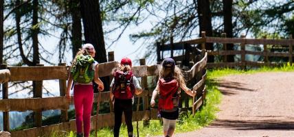 Harcerz w lesie - co powinien mieć?